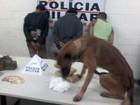 Grupo é detido após cães farejarem droga enterrada em paiol em Uberaba