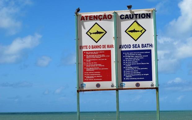 Avisos de tubarões na praia perto do hotel da seleção espanha (Foto: Victor Canedo)