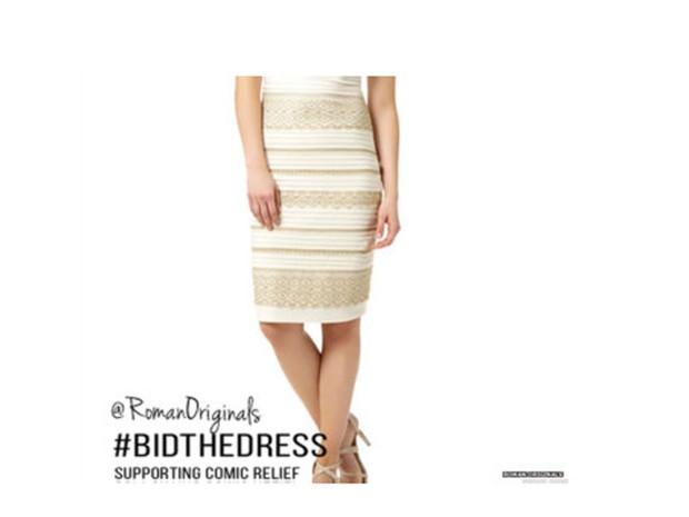 Foto de divulgação do vestido que causou polêmica nas redes sociais em 2015 (Foto: Divulgação Roman Originals)