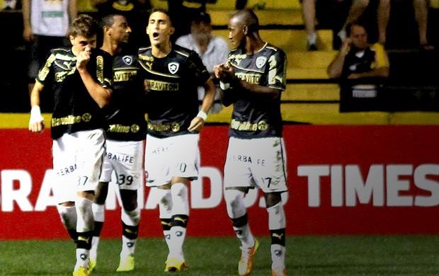 Octavio gol Botafogo contra Criciúma (Foto: Fernando Ribeiro / Agência Estado)