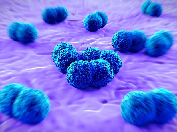 Meningite bacteriana (Foto: Royalty Stock Photo/Science Photo Library/Arquivo AFP)