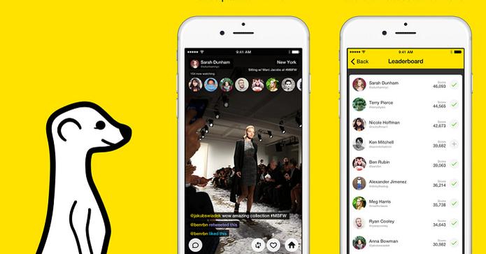 Meerkat permite fazer streaming de vídeo para seguidores no Twitter e Facebook (Foto: Divulgação/AppStore)