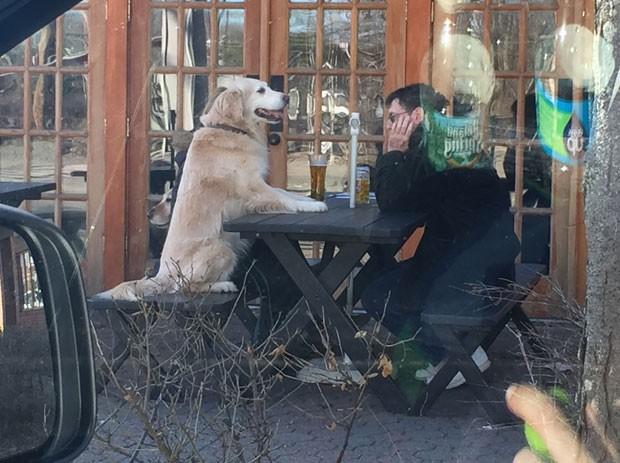 Foto de dono e cão sentados em bar de NY virou hit na web (Foto: Reprodução/Reddit/stevie_v)