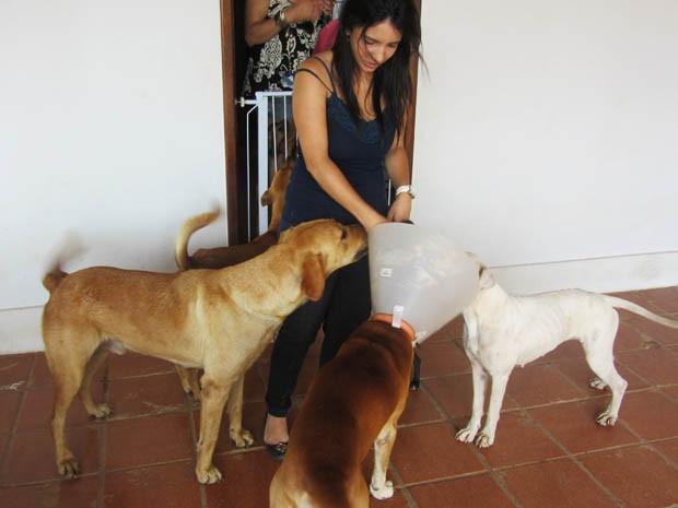 A estudante Luciana Moulin rodeada de cães no Pet Hostel, em São Sebastião (Foto: Isabella Calzolari/G1)