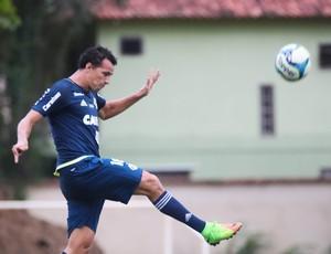 Leandro Damião marcou três gols pela Taça Rio na semana passada (Foto: Gilvan de Souza/ Flamengo)