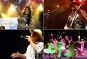 Recife terá 60 arraiais e mais de 800 atrações gratuitas