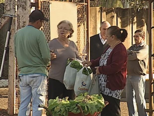 População pde levar para casa duas sacolas com duas variedades de hortaliças (Foto: Reprodução/TV TEM)