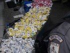 Cinco são detidos com maconha e cocaína em Macaé, no RJ