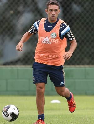 Palmeiras Allione (Foto: Cesar Greco/Ag Palmeiras/Divulgação)