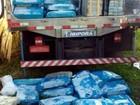 PF desarticula quadrilha que adquiria cocaína e maconha no Paraguai