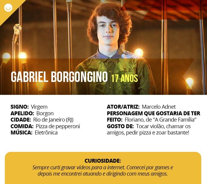 Card com informações curiosas de Gabriel Borgongino (Foto: Gshow)