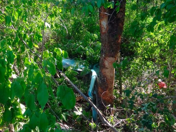 Partes do carro no meio do matagal onde o veículo caiu na Bahia (Foto: Blog do Sigi Vilares)