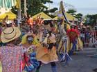 Arcoverde divulga programação do 'Carnaval Folia dos Bois' de 2016