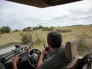 Sadativo é disparado à distância para manter segurança (Foto: Roberto Fecchio / Arquivo Pessoal)