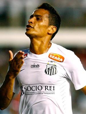Cícero comemora gol do Santos (Foto: Ricardo Saibun / Divulgação Santos FC)