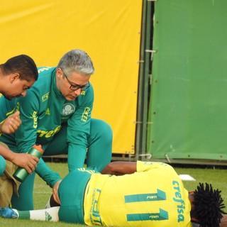Zé Roberto lesão treino Palmeiras (Foto: Rodrigo Faber)