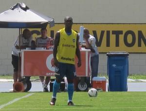 botafogo Seedorf  (Foto: Thales Soares/GLOBOESPORTE.COM)