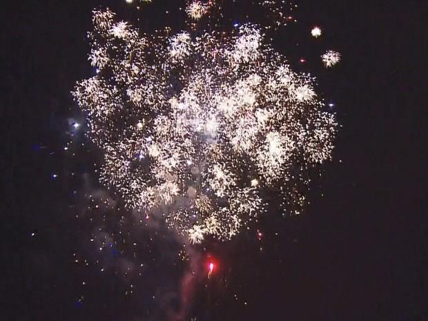 Fogos de artifício no Ibirapuera durante inauguração da Árvore de Natal (Foto: Reprodução/ TV Globo)
