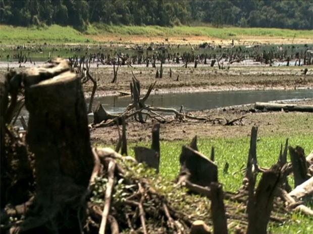 MP denuncia Sabesp de captar mais água que o permitido do Sistema Alto Tietê (Foto: Reprodução TV Globo)