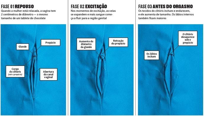Vagina dossiê (Foto: Revista Galileu)
