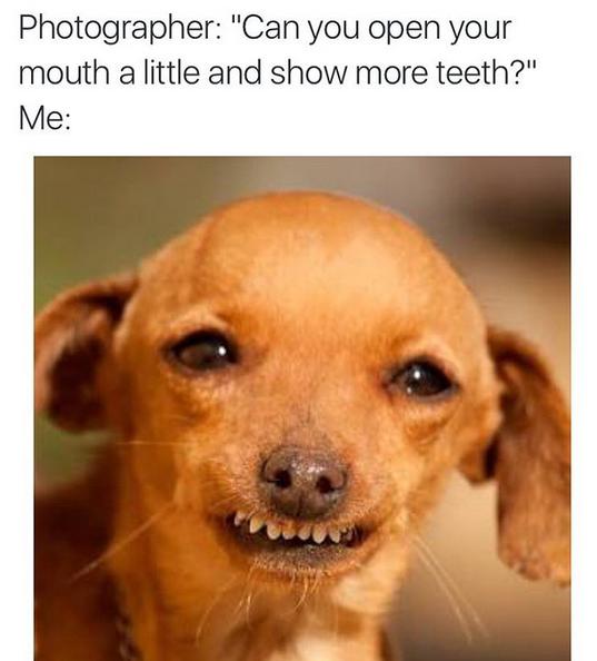 """""""Fotógrafo: mostre um pouco dos seus dentes"""" (Foto: Instagram/Reprodução)"""