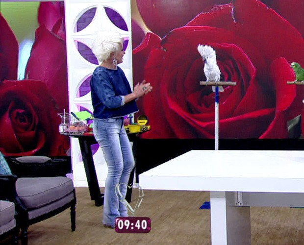Ana Maria dança com cacatua Kaká (Foto: Mais Você/TV Globo)