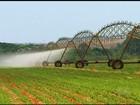 Cidades goianas driblam a crise e geram empregos no agronegócio