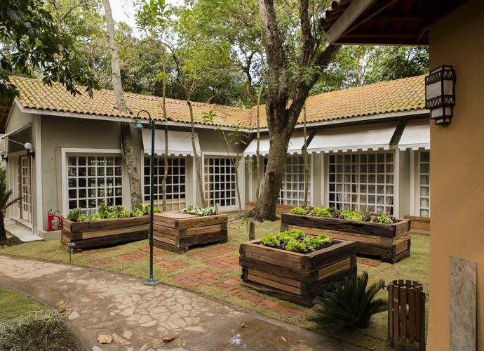 Horta do É de casa (Foto: Renato Rocha Miranda/TV Globo)