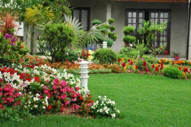 G1 Roçadeira, aparador ou cortador de grama qual comprar? notícias em Especial Publicitário  -> Decoração De Jardins Pequenos Com Flores