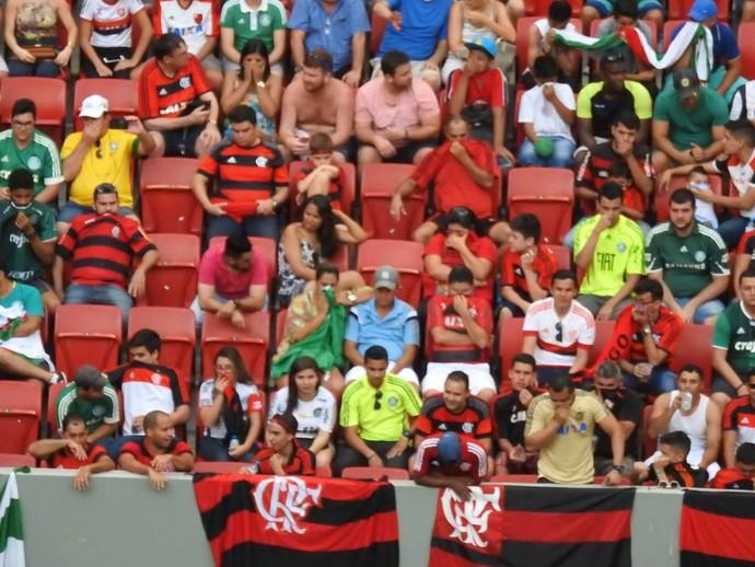 Torcida Gás de Pimenta Flamengo x Palmeiras (Foto: Fred Gomes)