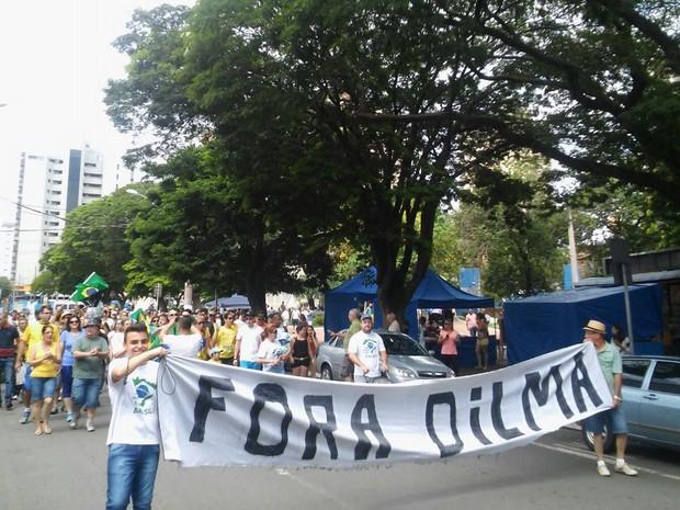 Em Limeira, organização do protesto contra Dilma contou 300 pessoas; para a PM foram 80 (Foto: Wesley Justino/EPTV)