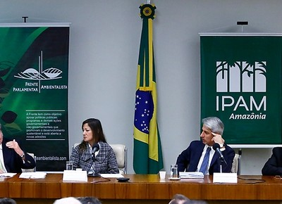 sarney-filho-codigo (Foto: Divulgação/Agência Câmara)
