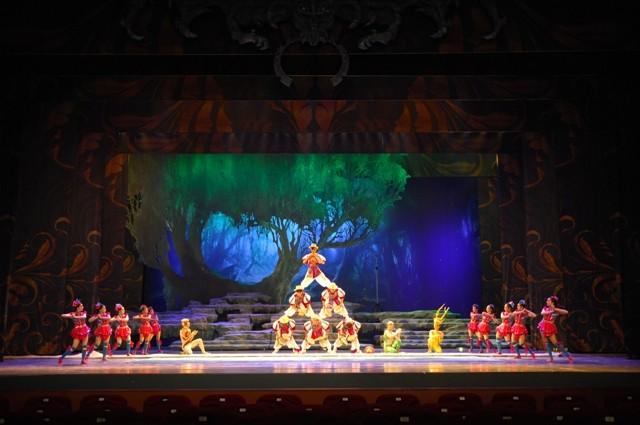 Circo Nacional da China (Foto: John Smith)