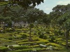 Cemitérios de Ribeirão Preto e região têm horário especial para Finados
