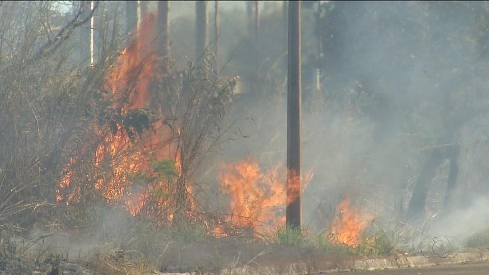 Tocantins ocupa segundo lugar em ranking nacional de queimadas (Foto: Reprodução/TV Anhanguera)