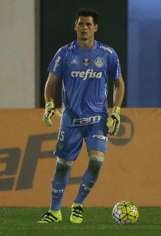 Vagner Palmeiras (Foto: Cesar Greco / Ag. Palmeiras / Divulgação)