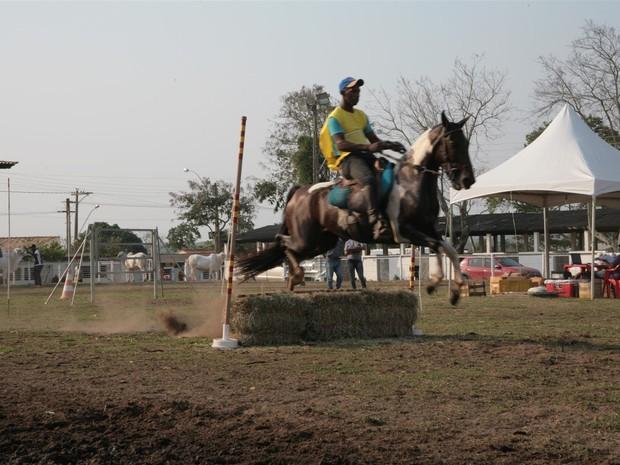 Exposições e competições movimentaram a economia da Expo Araruama (Foto: Camilo Mota/Ascom)