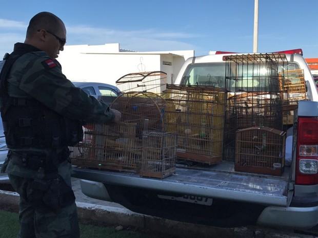 Polícia encontrou casa com animais depois de receber um trote (Foto: Walter Paparazzo/G1)