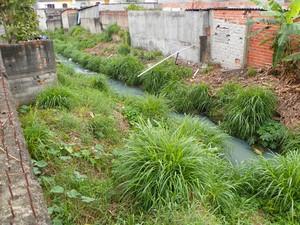 Moradores sofrem com córrego com falta de canalização na Zona Leste de SP (Foto: Marcos Alves de Oliveira/VC no G1)