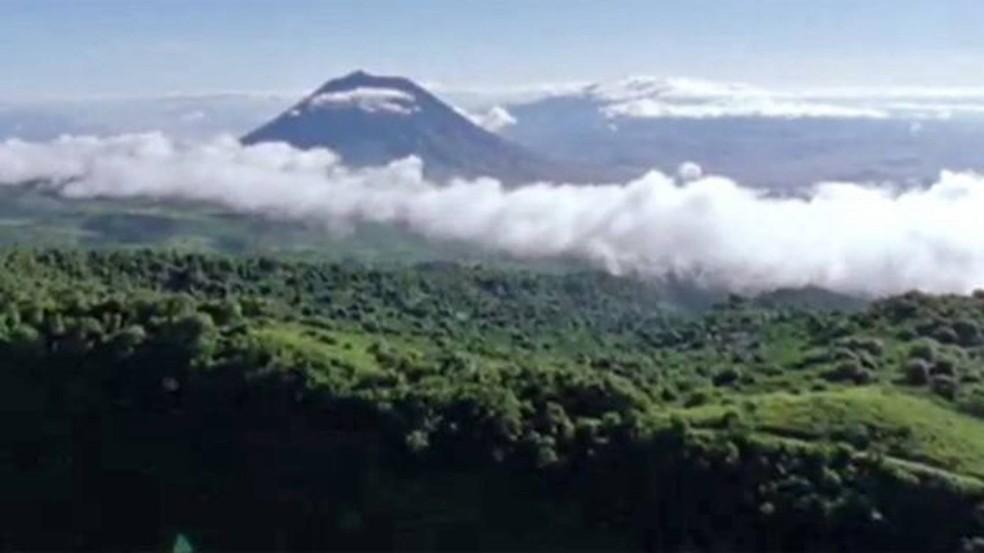 O Serengueti: teria sido assim o Saara há cinco mil anos?  (Foto: BBC)