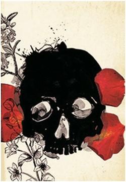 """Foto (Foto: Desenho para a capa de """"Hamlet ou Amleto?"""" , livro de Rodrigo Lacerda)"""