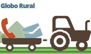 Fale com o Globo Rural: mande fotos, vídeos ou cartazes