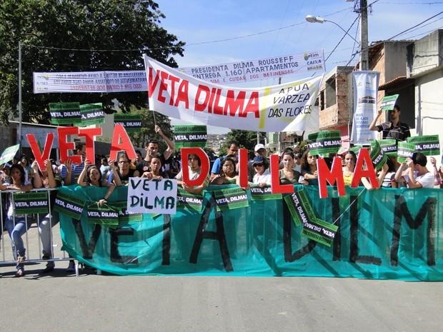Grupo de manifestantes pede que presidente vete o Código Florestal. (Foto: Pedro Triginelli/G1)