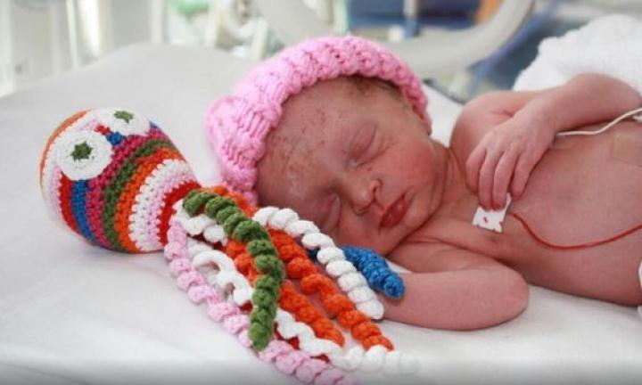 Maternidades dão polvo de crochê para bebês prematuros abraçarem  (Foto: Reprodução Pinterest)