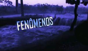 Fenômenos  (Foto: Reprodução/RBS TV)