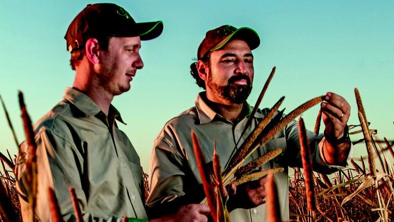 fazenda-sustentavel (Foto: Rogério Albuquerque)
