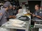 Polícia apreende peixes irregulares durante fiscalização na região