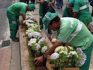 Canteiros de Petrópolis passam por manutenção (Foto: Divulgação/Prefeitura de Petrópolis)
