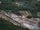 Greenpeace liga desmatamento no Brasil a produção de carros nos EUA