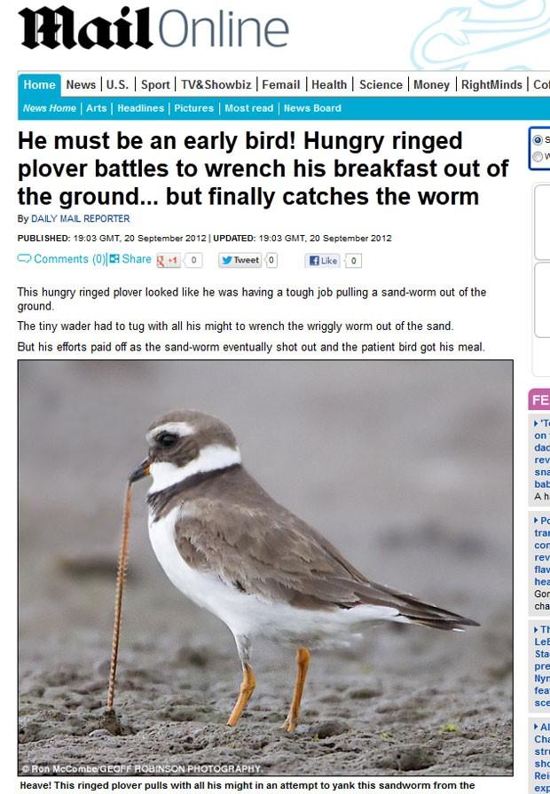 Pássaro foi fotografado com dificuldade para conseguir sua refeição. (Foto: Reprodução/Daily Mail)